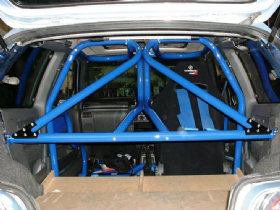 radical custom roll cage
